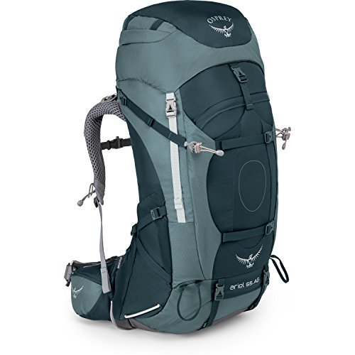 Osprey Ariel 65 Womens Hiking Backpack Medium Boothbay Grey [並行輸入品] B07DVM6R74