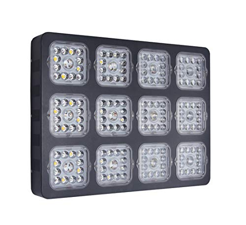 1200W LED Plant Grow Light Full Spectrum for Greenhouse and Indoor Plants Veg Flower (240x5W, Actual Power Consumption 440W) (1200W-B)