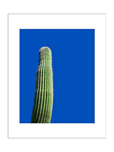 West Picture Frame American (Minimalist Photo Saguaro Cactus Arizona Desert Botanical 5x7 Inch Matted Art Print)