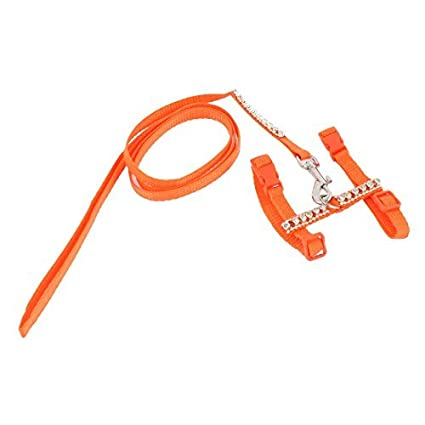 Amazon.com : DealMux Puppy Dog Pet Training ajustável Harness Corda Leash Traction, Orange : Pet Supplies