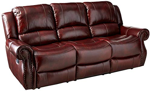 Cambridge 98528DRS-OB Telluride Leather Double Reclining Sofa, Brown ()