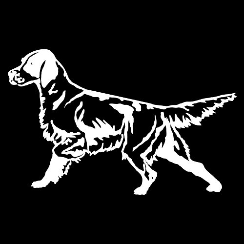 English Setter Detailed (White - Image Facing as Shown - Small) Decal Sticker - Hunting Dog -