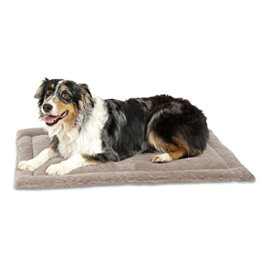 Aspen Pet Kennel Mat, 32 by 21-Inch