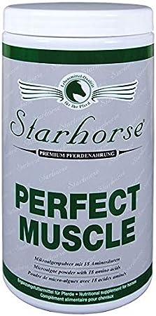 Star Horse Perfect Muscle para caballos 1500g lata musculatura.