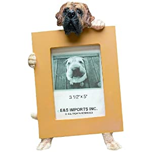 English Mastiff Picture Frame Holds Your Favorite 2.5 by 3.5 Inch Photo, Hand Painted Realistic Looking English Mastiff Stands 6 Inches Tall Holding Beautifully Crafted Frame, Unique and Special English Mastiff Gifts for English Mastiff Owners 10