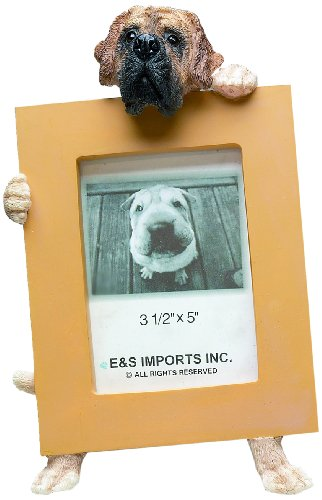 - English Mastiff Picture Frame Holds Your Favorite 2.5 by 3.5 Inch Photo, Hand Painted Realistic Looking English Mastiff Stands 6 Inches Tall Holding Beautifully Crafted Frame, Unique and Special English Mastiff Gifts for English Mastiff Owners