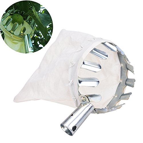 JETTINGBUY Fruit Picker, Convenient Useful Horticultural Gardening Apple Pear Peach Picking Tools