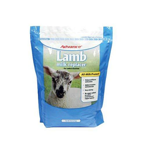 Advance 4658 Lamb Milk Replacer, 8-Pound by Milk Specialties, Inc.