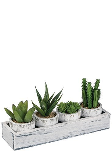 4 Faux Potted Cactus in Tray - Cute Decoration Decor Gift Idea - Succulent Indoor Plant Set