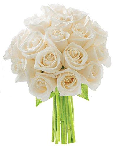 KaBloom Bouquet of 18 Fresh Cut White Roses (Farm-Fresh, Long-Stem)