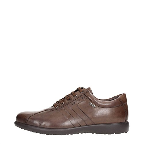 Igi&Co 47322 Sneakers Uomo Pelle Marrone Marrone 44