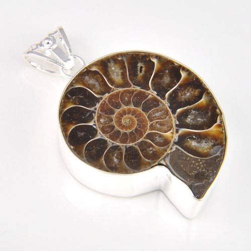 Khongkwan Natural Handmade Ammonite Fossil Gemstone Silver Pendant Necklace by -
