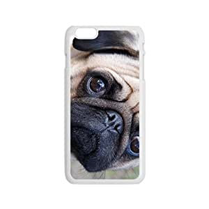 Curious Dog Bestselling Hot Seller High Quality Case Cove Hard Case For Iphone 6