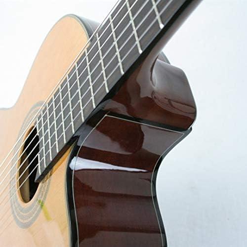 Ibanez AEQ2T - Guitarra electro clásica para conciertos: Amazon.es ...