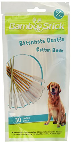 BambooStick Double Pack Cotton Buds, - Dog Dirty Big Dog