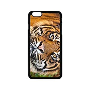 linJUN FENGThe Loveable Tiger Hight Quality Plastic Case for Iphone 6