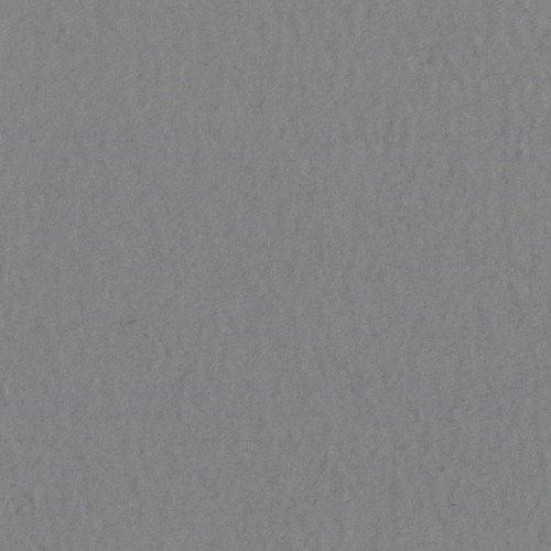 Bazzill Basics Paper T19-10141 Prismatic Cardstock, 25 Sheets, 12 by 12-Inch, Gray Bazzill Prismatic Cardstock