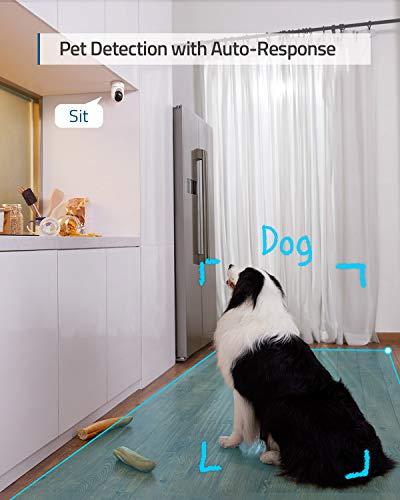 eufy Security Solo IndoorCam P22, 1080p Security Indoor Camera Pan & Tilt, Plug-in Camera with Wi-Fi, Human and Pet AI…