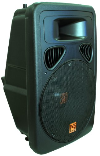 Buy Mr. Dj PP PP-3000BT+ 15-Inch 3000-Watt Max Power Speaker with Built-In LCD/MP3/USB/SD Built-In B...
