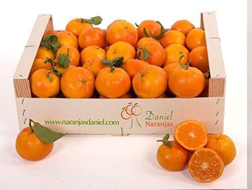 Mandarinas Tango de Valencia, del Arbol a Tu Mesa en 24 horas (6kg ...