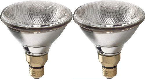 Ge Track Halogen Par30 - GE Lighting 68956 Energy-Efficient Halogen 75-watt 1500-Lumen PAR38 Spot Light Bulb with Medium Base, 2-Pack