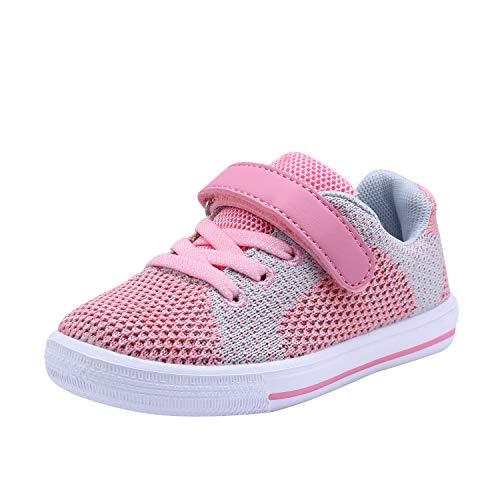 Zoneyue Girls Low Top Velcro Tennis Skate Sneakers(Toddler/Little Kids) (8 M US Toddler, Pink)