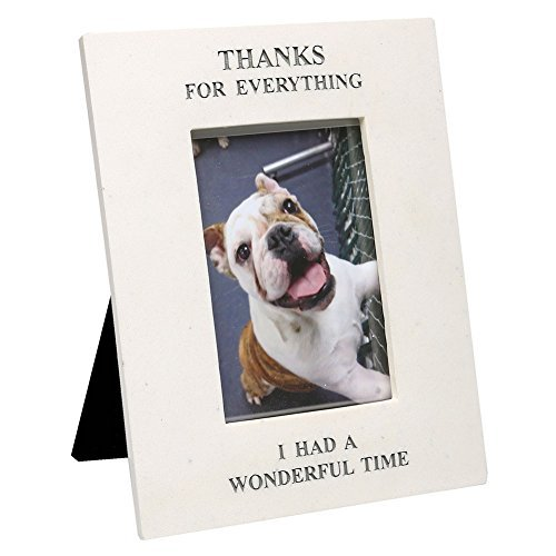 (Thanks for Everything Pet Memorial Rectangle Picture Frame)