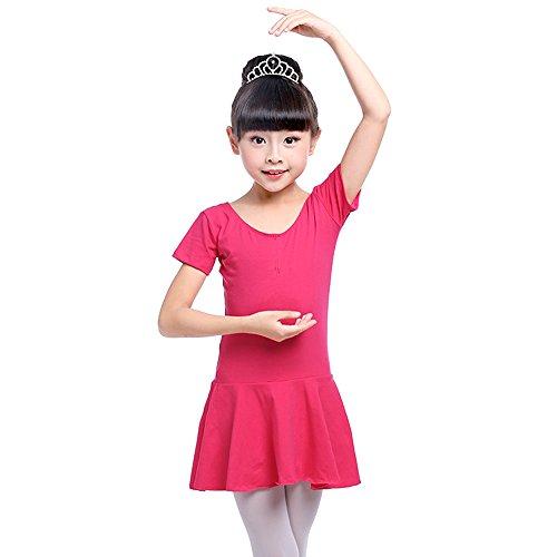 Fuyingda Little Girls Long Sleeves/Short Sleeve Gymnastics Dress Kids Dancewear Ballet Leotard Skirt Costumes, (A2 Gymnastics)