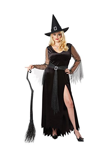 Rich Woman Halloween Costume (Rich Witch Womens Plus Size Costume 2X)