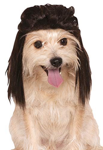 Dog With Mullet (Rubies Costume Company Mullet Pet Wig, Medium/Large,)