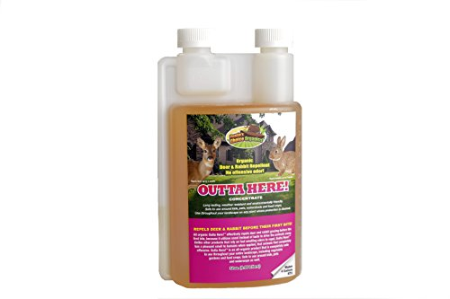 Outta Here! Organic Deer & Rabbit Repellent 32 oz Concentrate
