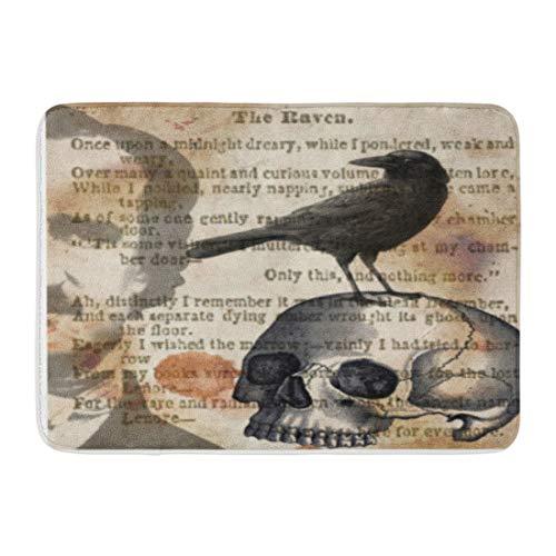 Custom Doormats Edgar Allan Poe The Raven Skull Home Door Mats 16 x 24 inches Entrance Mat Floor Rug Indoor/Outdoor/Front Door/Bathroom Mats Rubber Non Slip by TonTong