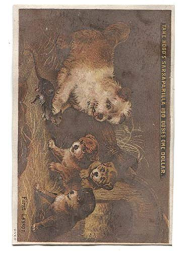 Trade Card Hoods - Antique Hood's Sarsaparilla Medicine Victorian Trade Card Dogs Rat First Lesson