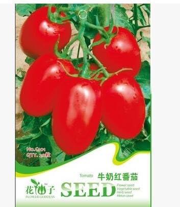 150pcs venta caliente! semillas de tomate rojo brezo semillas de vegetales orgánicos para el jardín de DIY, .: Amazon.es: Jardín