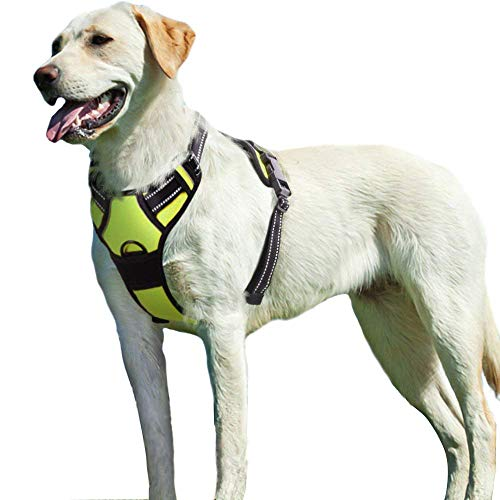 Eagloo No Pull Dog Harness with Front Clip, Walking Pet Harness with 2 Metal Ring and Handle Reflective Oxford Padded Soft Vest for Small Medium Large Breed (Green, L)