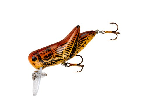 Rebel bighopper fishing topwater bait brown durable set for Fishing with crickets