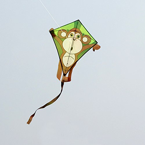 The 8 best kites under 10