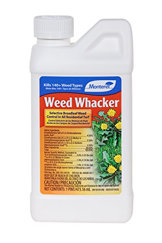 weed-whacker-size-1-quart