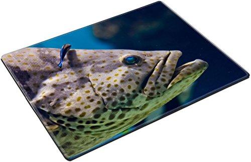 MSD Place Mat Non-Slip Natural Rubber Desk Pads design: 37450145 Curious nassau grouper in the (Nassau Natural)