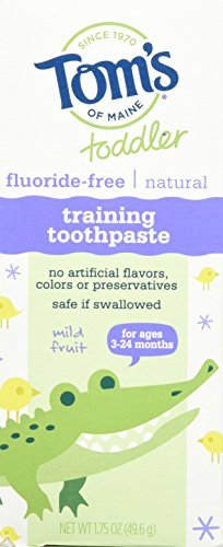 Price comparison product image Tom's of Maine Toddler Fluoride free Natural Training Toothpaste Mild Fruit 1.75 Oz (Pack of 3)