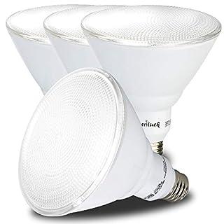 AmeriLuck 5000K Daylight Outdoor PAR38 LED Flood Light Bulb, 90W Equiv. 13W Non-Dimmable (4 Pack)