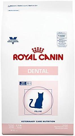 ROYAL CANIN Feline Dental Dry 7.7 lb by Royal Canin