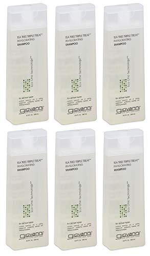 (Giovanni Invigorating Shampoo, Tea Tree Triple Treat, 8.5-Ounce Bottles (Pack of 6))