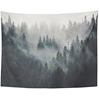 Emvency Tapestry Green Tree Misty Landscape with Fir Forest in Hipster Vintage Retro Style Pine Alpine Home Decor Wall Hanging for Living Room Bedroom Dorm 60x80 inches