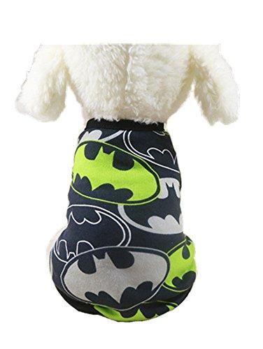 Chicp (Small Dog Bat Costume)