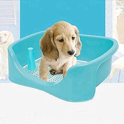 TeaQ baño entrenador para perro grande, W.C. 50x 40x