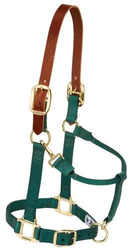 Weaver Leather Nylon Adjustable Breakaway Horse Halter, Average, Hunter Green (Nylon Adjustable Horse Halter)