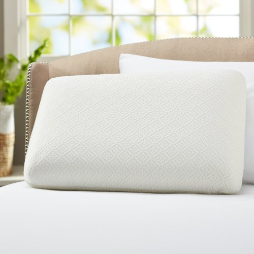Cheapest Prices! Pinzon Gel Top Memory Foam Cooling Pillow