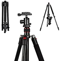 Mcoplus 63 Inch Professional Lightweiht protable Aluminium Alloy Camera Tripod With 360° Panorama Ball head+1/4 Quick Shoe Plate+Bag for DSLR Camera/ Video Camcorder