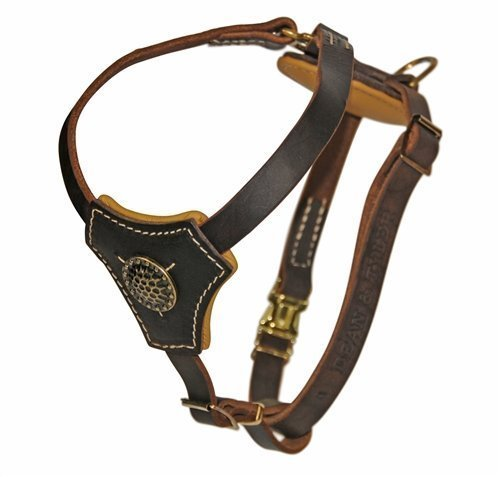 Dean and Tyler Royal Classic Knight Harness Medium (Girth  18.5  Neck  16 -23 ) w Solid Brass Hardware Brown